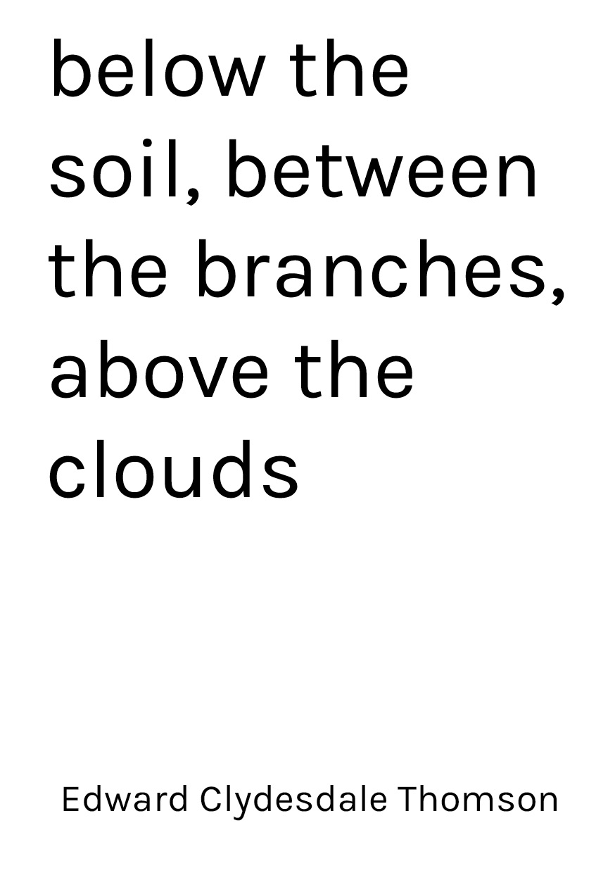 below the soil, between the branches, above the clouds